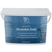Blue Hors Electrolyte Daily