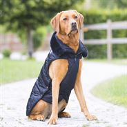 Eskadron Platinum Dog Coat